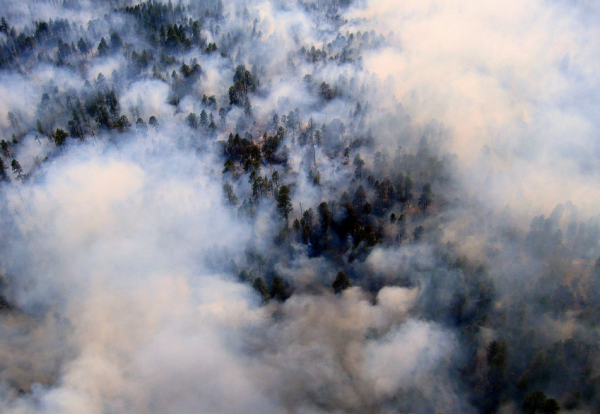 Experts say people need to shift the way they think about fire, like the Baldy fire burning through the Gila National Forest in New Mexico in May, 2011.