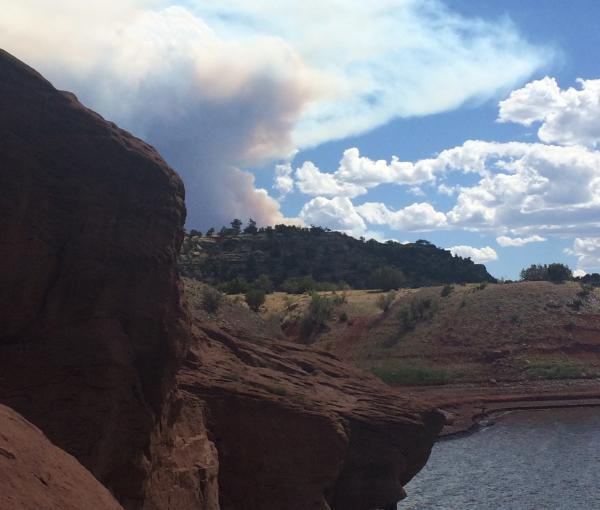 Management efforts of the Diego Fire burning in the Santa Fe National Forest near Abiquiu reservoir have been upgraded after the fire grew exponentially on Sunday afternoon.