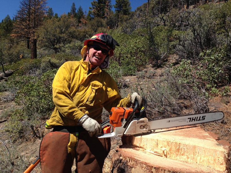 TMFPD Captain Shawn Heywood takes a well-earned break after chopping down a towering pine tree in Washoe Valley. He was practicing his tree felling skills in case the region experiences a large wildfire this summer.