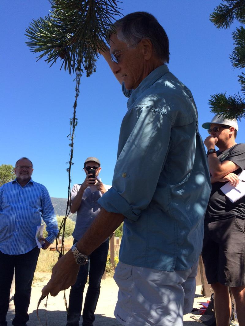 Lars Anderson shows onlookers a large piece of Eurasian milfoil, the peskiest aquatic weed in the Tahoe Keys.