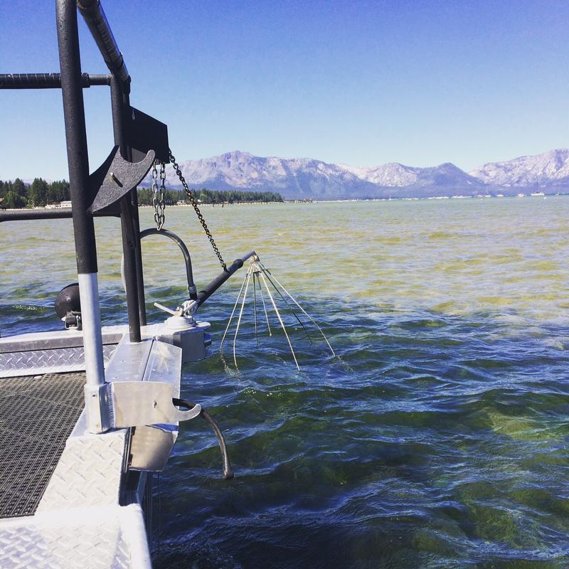 "The UNR research team uses an ""electrofishing"" device that stuns fish, enabling them to sort the invasives from the natives."