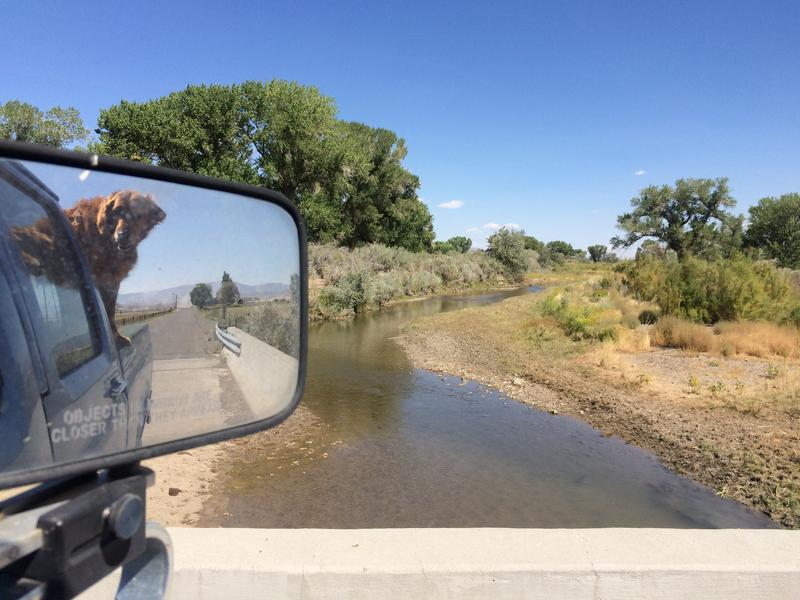 Now in its fourth year, the drought has nearly dried up the Walker River, the main source of water for farmers in the Mason and Smith vallies.