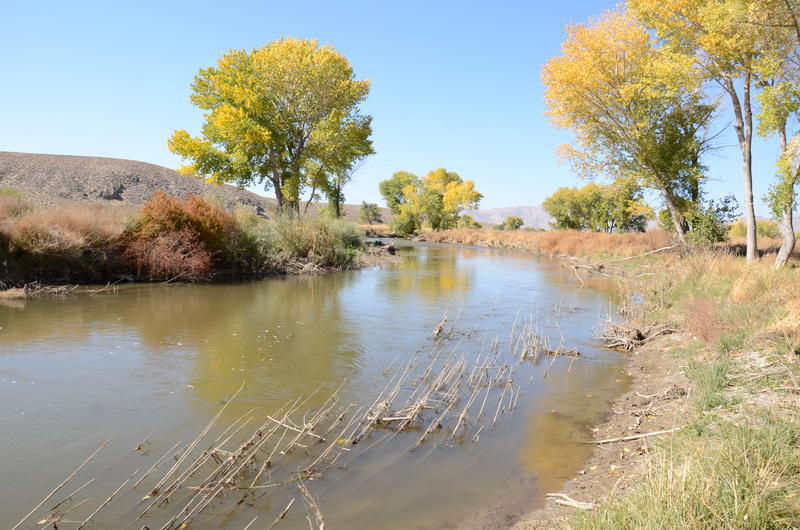 A look at the Walker River from the Pitchfork Ranch. This part of the river corridor will be open to the public for the first time in more than 100 years.