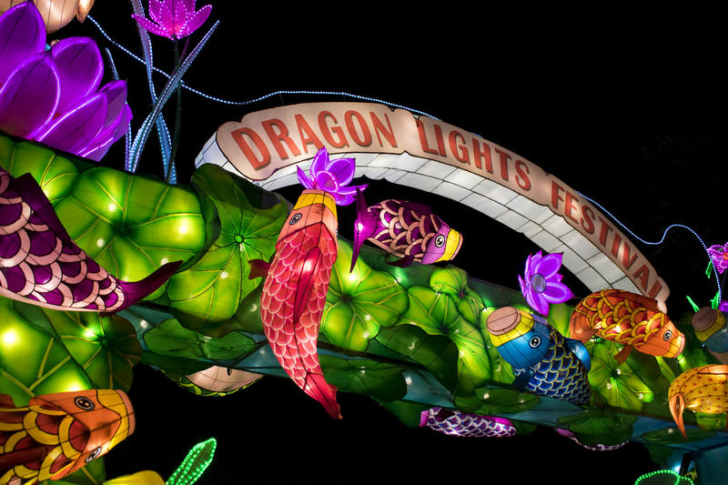 "A photo at night of a lit-up sign reading ""Dragon Lights Festival"" with brightly colored, lit-up fish and flowers surrounding it."