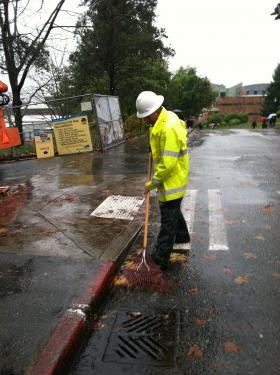 Man clears leaves from storm drain