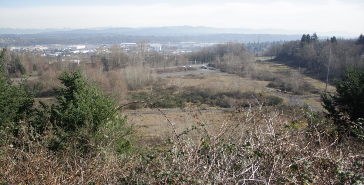 "Once intended as a campus for Nintendo, this rare piece of undeveloped land called the ""Myers Way properties"" was snatched up by Seattle for a firefighter training facility. It only needed part of the land though. It's been trying to dump the extra land e"