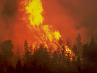 Ongoing Washington wildfires and dry conditions have resulted in a statewide burn ban.