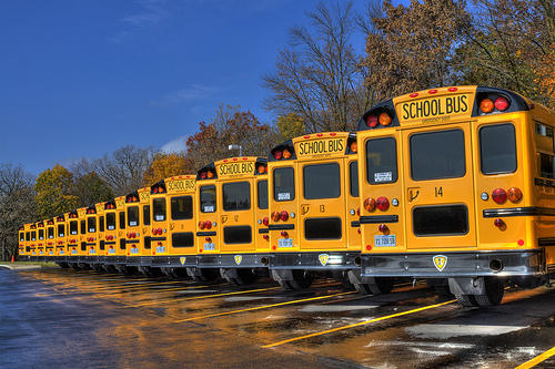 Photo of school buses parked in a parking lot.