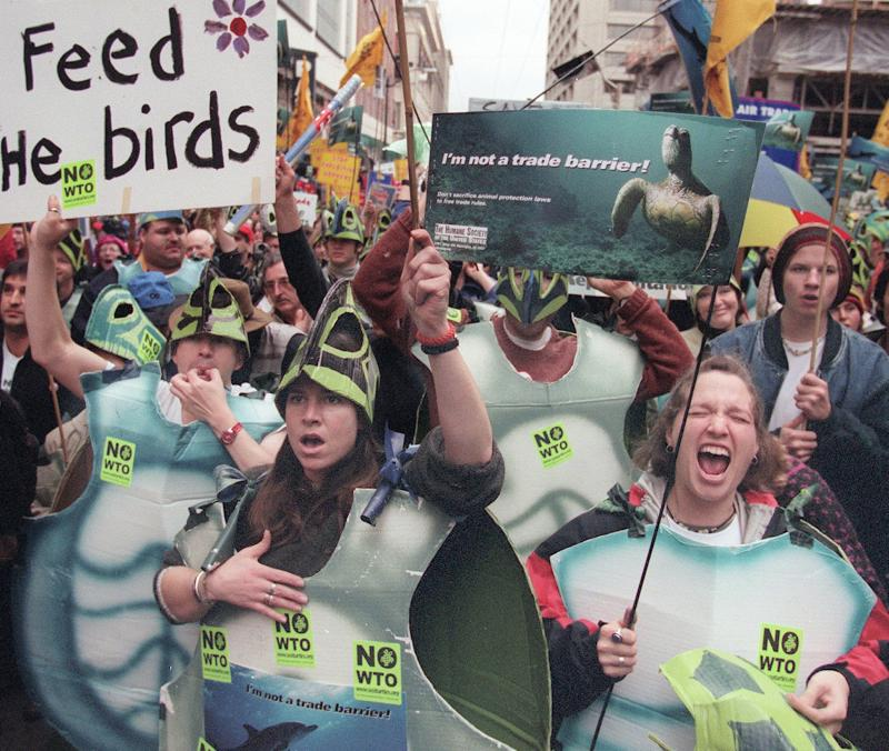 Sea turtle costumes worn in protest during the 1999 WTO conference in Seattle to protest a ruling that threatened the existence of endangered sea turtles. Those who wore them had to promise to return them and refrain from violence.