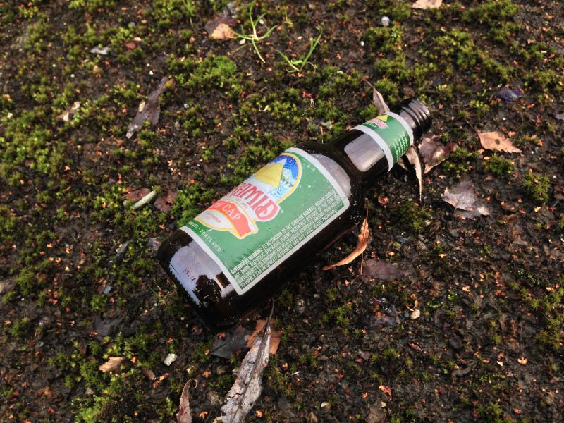 A beer bottle on the mossy concrete.