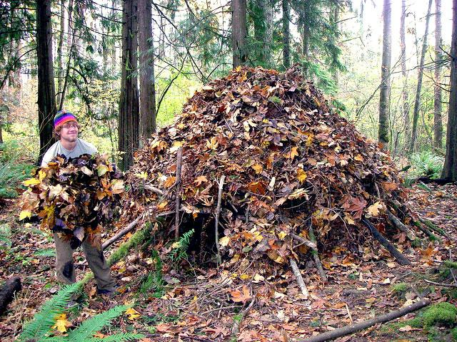 Creating a tipi-style shelter out of forest debris can help insulate you from the elements.