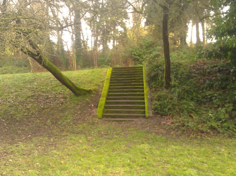 Hidden stairway in Volunteer Park.