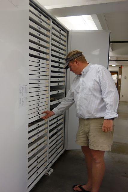 Rob Faucett, collections manager at the Burke, searches for a bird.