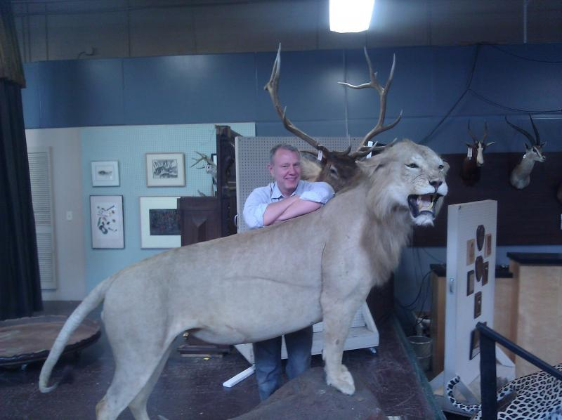 Pacific Galleries auction manager Mike McConnell hangs out with a mountain lion.