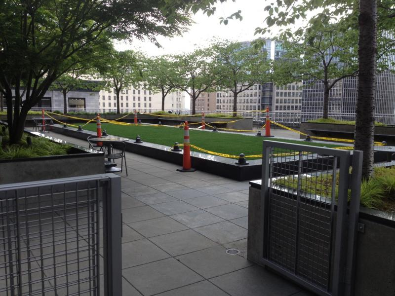A tiny public space with a killer view. The POPOS at 925 4th Ave. Grass is off limits only because it's being re-seeded.