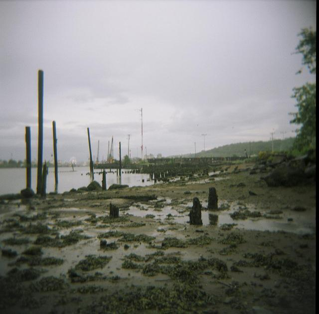 The cleanup of the Duwamish River in Seattle is a continual hot topic in local environmental news.