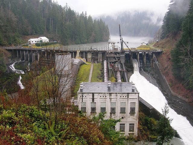 The lower Elwha Dam is no more, but there are still questions about the eco recovery of this system.