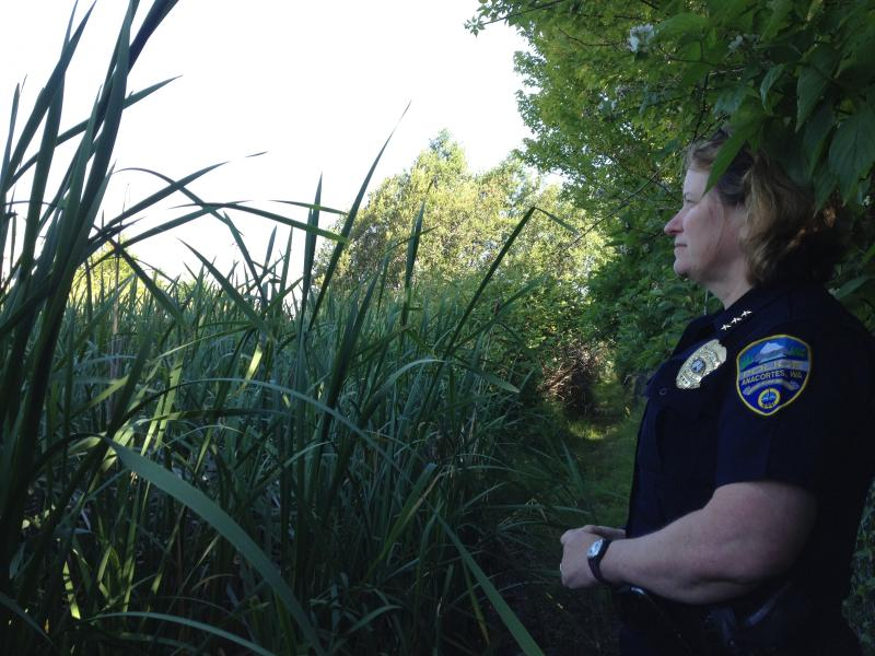 Anacortes Police Chief Bonnie Bowers looks out on the marsh where 69-year-old William Landers' body was found.