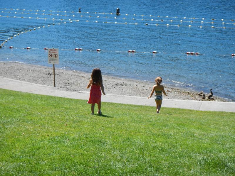 No swimming for these girls, who seemed to enjoy Meydenbauer Beach Park nonetheless. The family of mallards apparently did not read the sign.