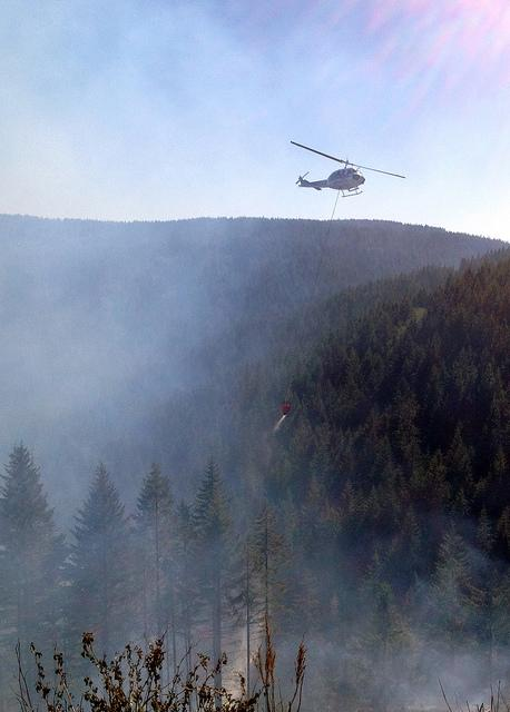In Washington, we're accustomed to forest fires every summer. Already this year crews had to fight the C-Line fire in Capitol State Forest, which was first reported on May 4.