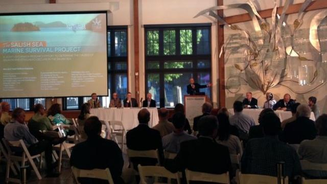 Salmon leaders from Washington and British Columbia gathered in Seattle for the launch of a new $20 million research and recovery project.