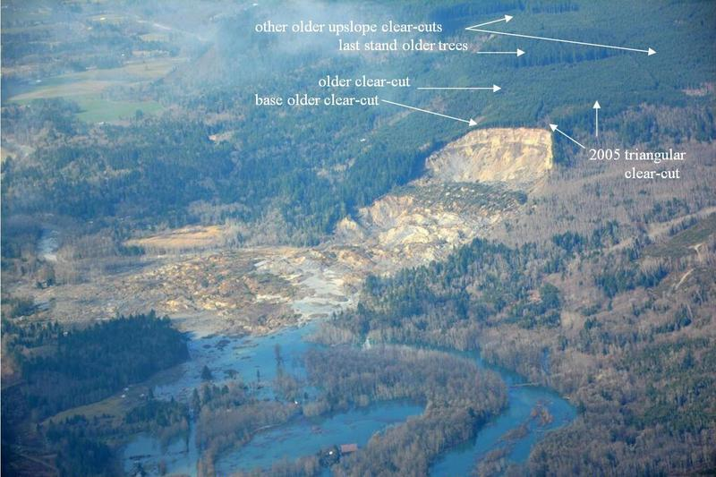 WSDOT photo of Oso slide area annotated by retired fisheries biologist Bill McMillan of Concrete, Wash.