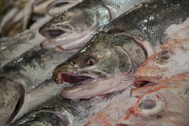 File photo: salmon.