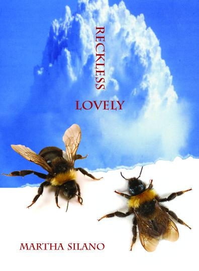 Book cover Reckless Lovely