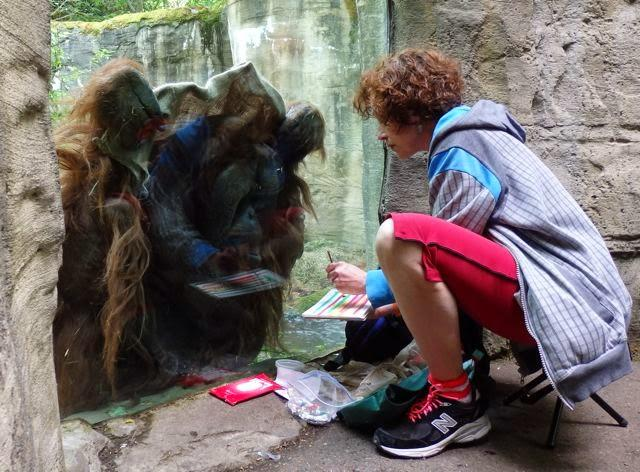 Towan the orangutang watches actress Karin Konoval work at the Woodland Park Zoo in Seattle.