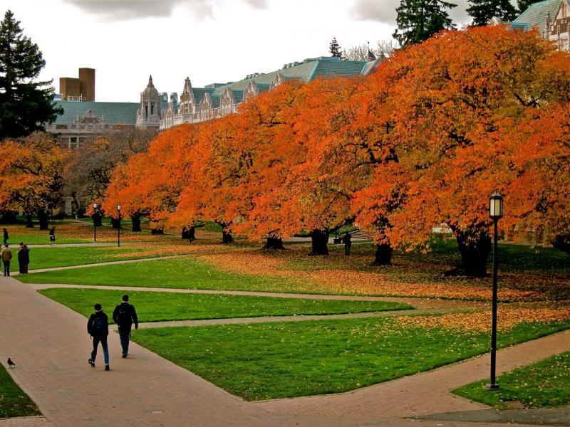 Students walk through the UW's Quad on the Seattle campus.