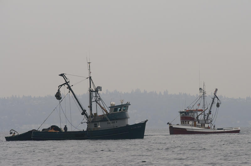 Fishing boats on Puget Sound