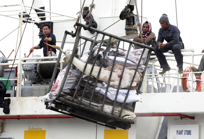 2014 file photo: Workers in Indonesia load fish onto a cargo ship bound for Thailand. Seafood caught by slaves mixes in with other fish at a number of sites in Thailand.