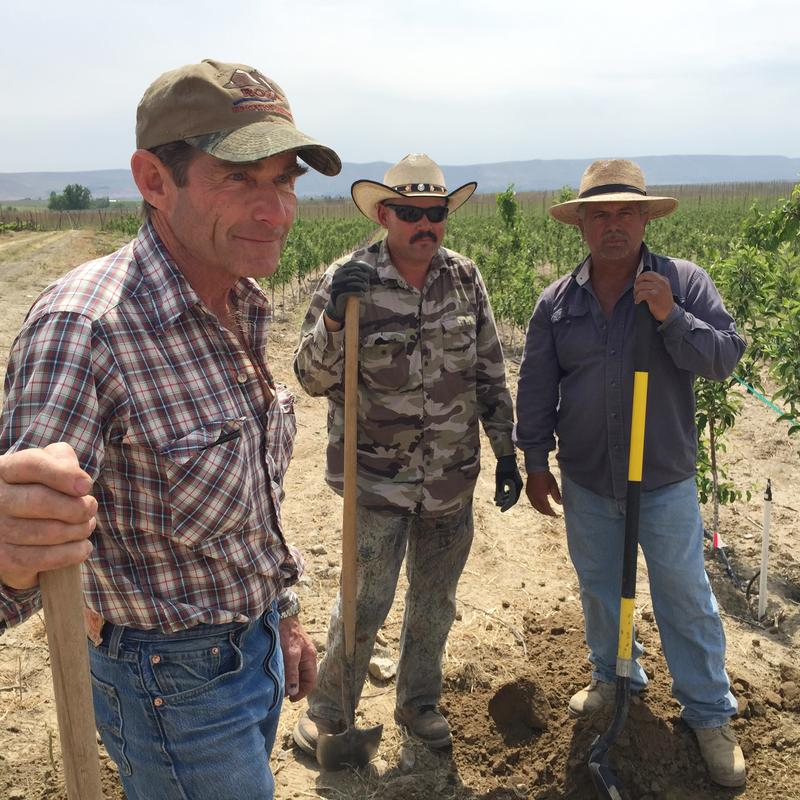 Jim Willard, Juan Manel and Leobardo Magana worked to adjust irrigation systems for the short water year on a farm outside of Prosser, Wash.