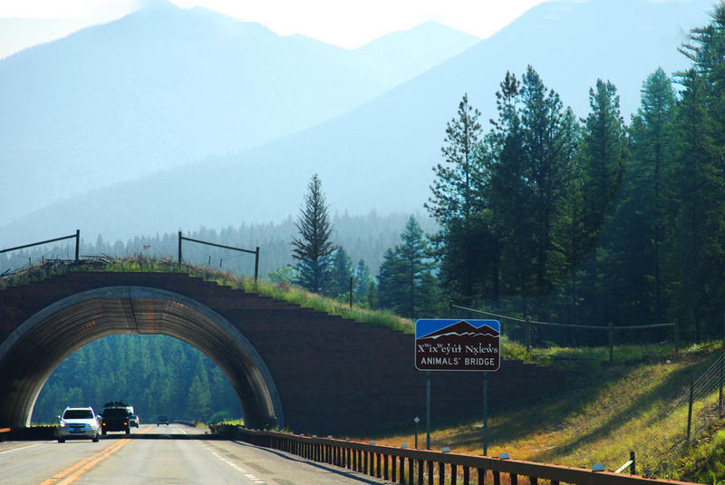 An example of animal bridge on the Flathead Indian Reservation in Montana. Washington is building wildlife overpasses over I-90 near Snoqualmie Pass.