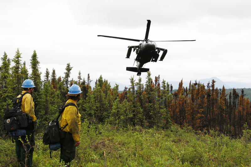 Members with the U.S. Forest Service's Lassen Interagency Hotshot crew stationed at Susanville, Calif., observe an Alaska Army National Guard UH-60 Black Hawk helicopter approach a landing zone June 30, 2013, over Palmer, Alaska.