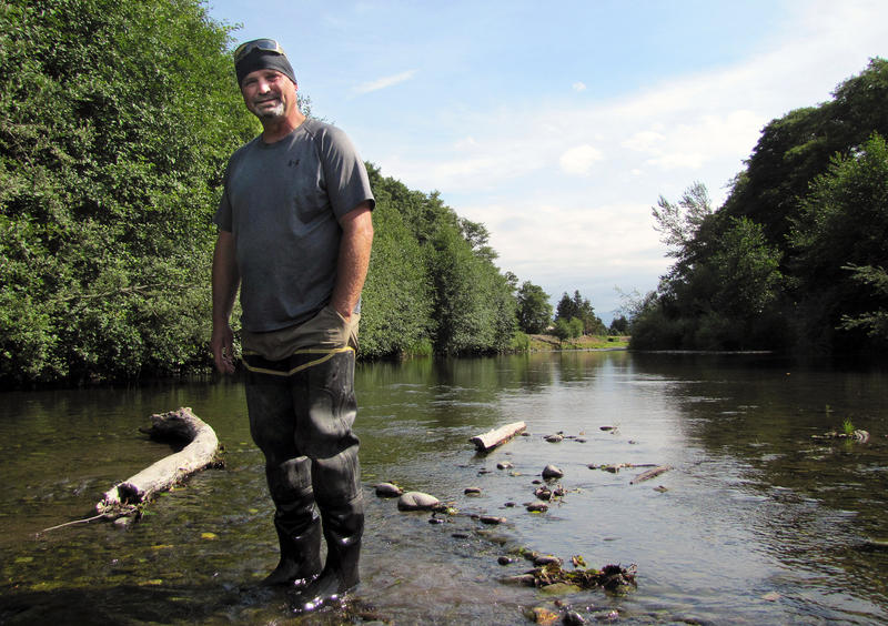 Chris Burns, natural resources technician with Washington's Jamestown S'Klallam Tribe, stands in the Dungeness River. Flows are roughly one-third of normal, prompting fears that salmon won't be able to make it upstream to spawn.