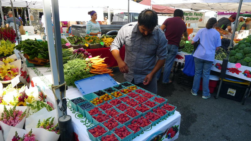 A shopper peruses berries at the West Seattle farmers market.