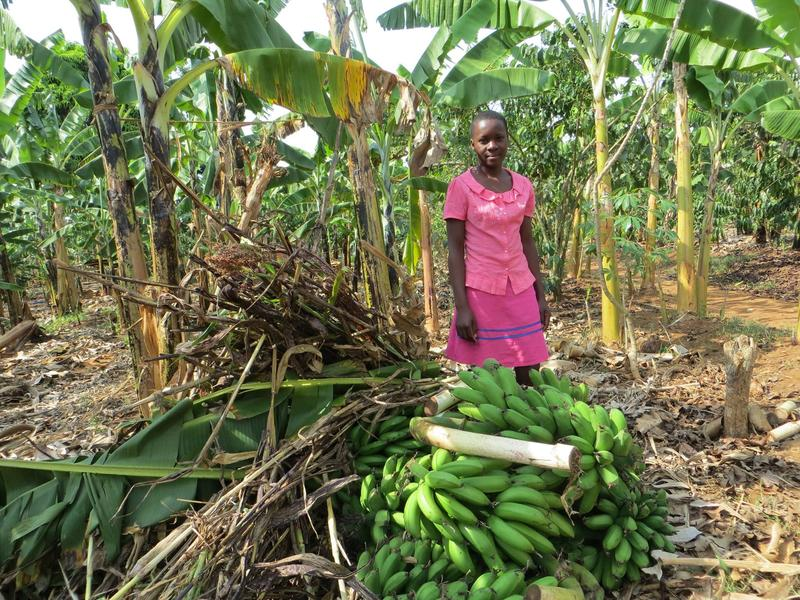 Lovincer from Uganda works managing her fresh banana business to support her family.