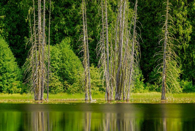 Howard Lake, north of Stehekin in Washington's North Cascades.