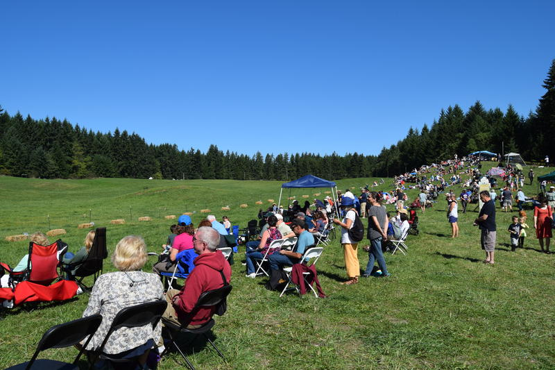 Spectators line one side of the field at the 2015 Vashon Sheepdog Classic.