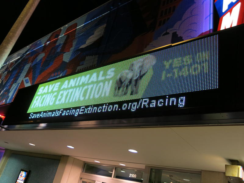 "Cinerama preview of ""Racing Extinction"" raised money for Initiative 1401."