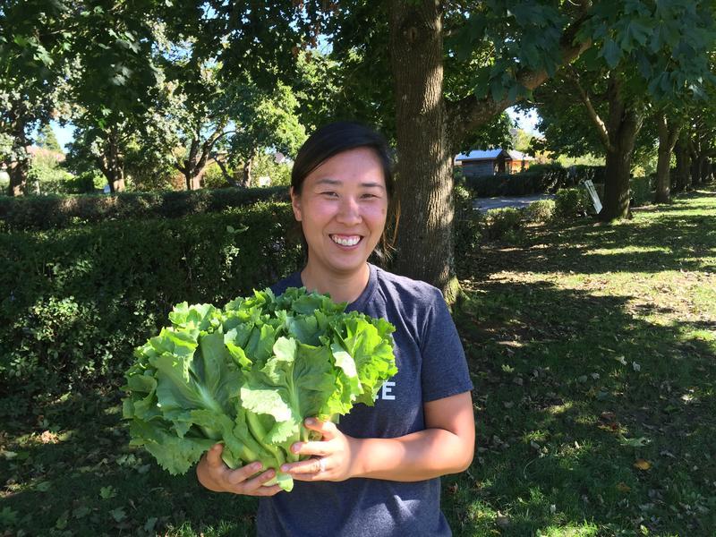 Chef Rachel Yang holds an escarole -- 'Bigger than my head!' -- from the Wallinford Farmers Market.
