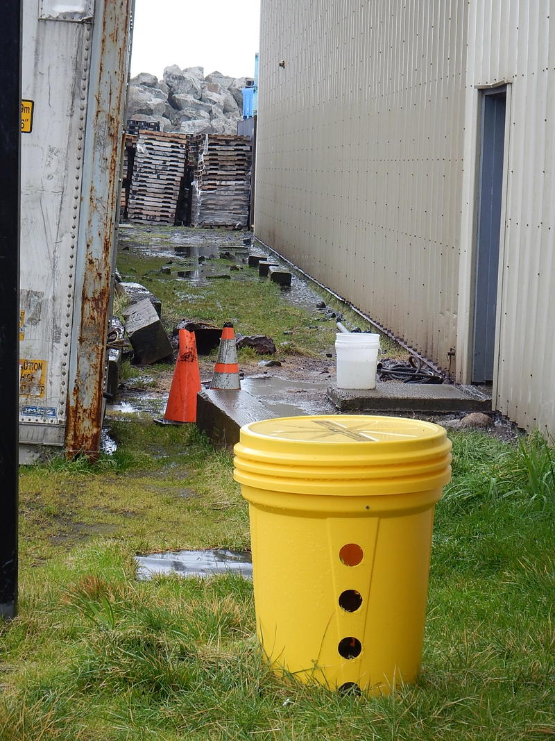 A rat trap outside the Trident Seafoods plant on St. Paul Island.