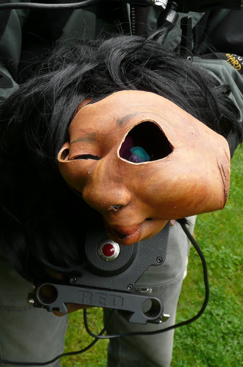 A mask worn by researchers during the filming of a 'Murder of Crows.' Researchers found that crows recognize people and react strongly to those who have wronged them -- even more than a year later.