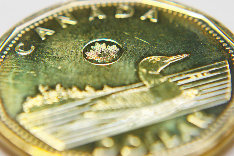 Canadian dollar, or 'loonie'