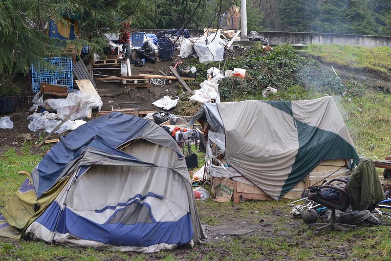The Jungle: a green beltway east of Interstate 5 where dozens of homeless people live.