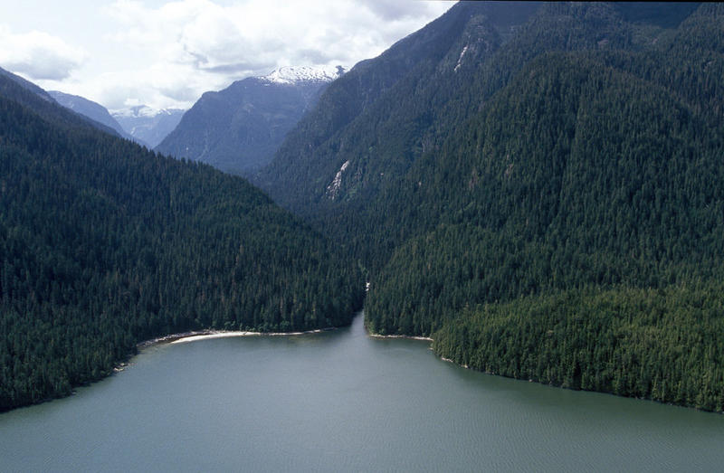 Canada's Great Bear Rainforest.