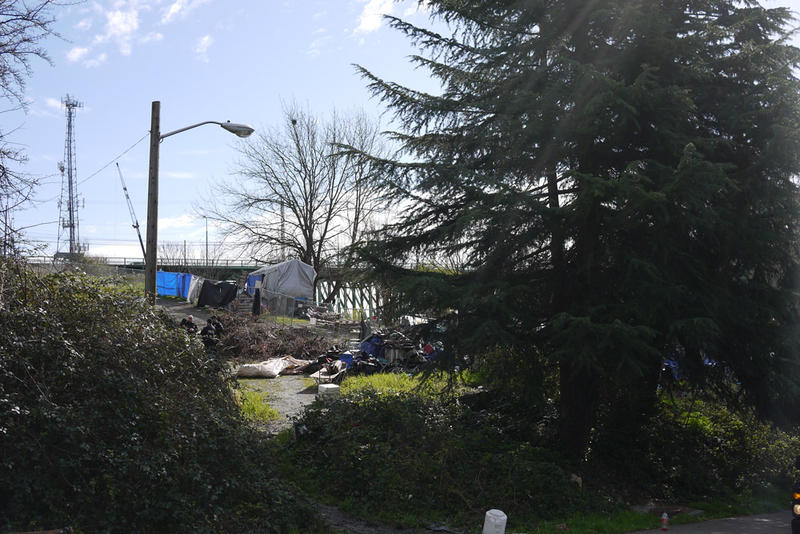 A view of the former Nickelsville homeless encampment off of South Dearborn Street on Friday, March 11.