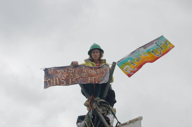 Activist Abby Brockway was part of a panel discussing civil disobedience in response to climate change.