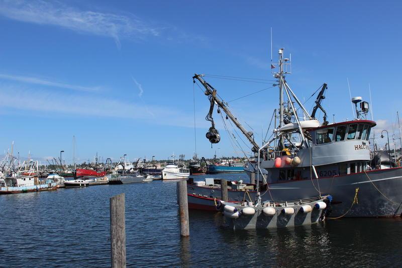 Fishermen's Terminal, Seattle, Washington.
